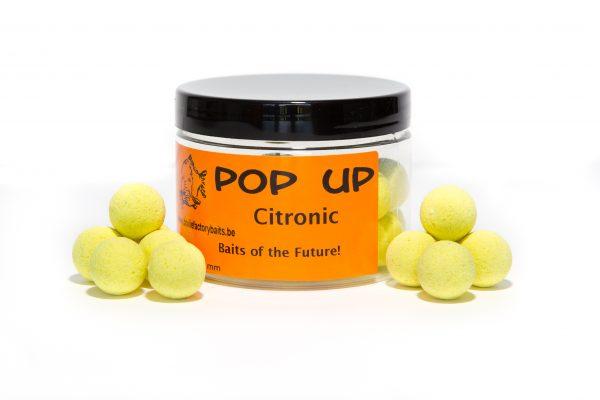 popup-citronic
